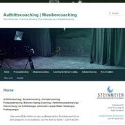 Webseite-auftrittscoaching